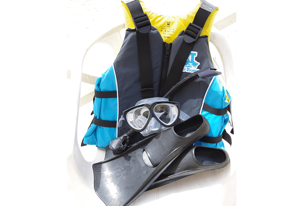 Basic Snorkel Equipment  (Life Jacket, Fins, Mask & Snorkel):